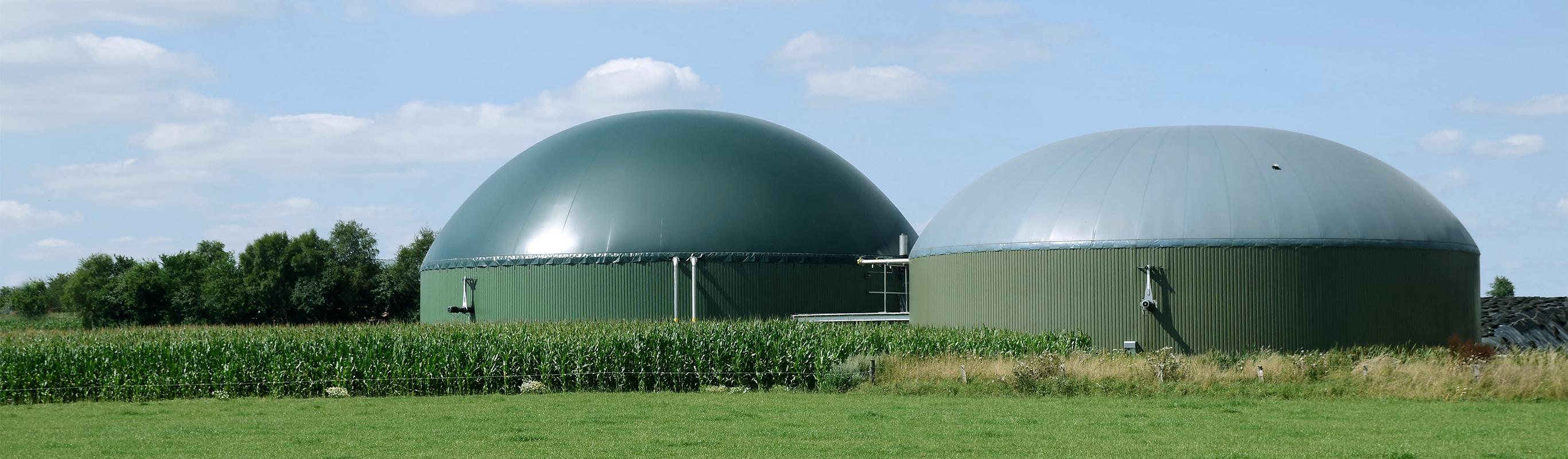 mit biogas die co2 bilanz verbessern. Black Bedroom Furniture Sets. Home Design Ideas